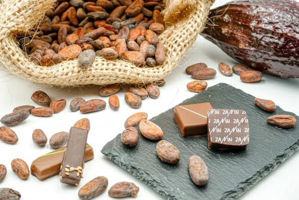 feve-chocolat
